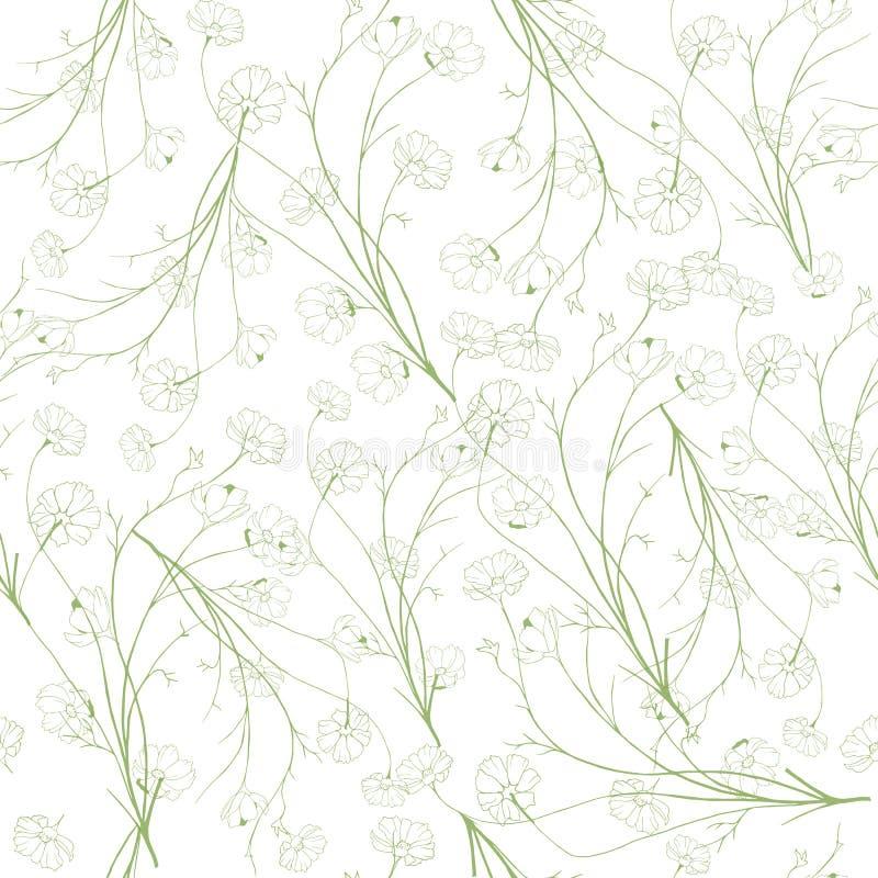 Lata lekki tło konturowi zieleni kolory Wiosen botaniczne tekstury na białym tle dla kart, tkaniny, zaproszenia, ilustracji
