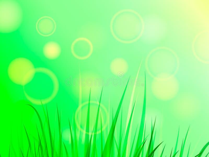 Lata lub wiosny halizna z zieloną trawą Przestrzeń dla teksta również zwrócić corel ilustracji wektora ilustracja wektor