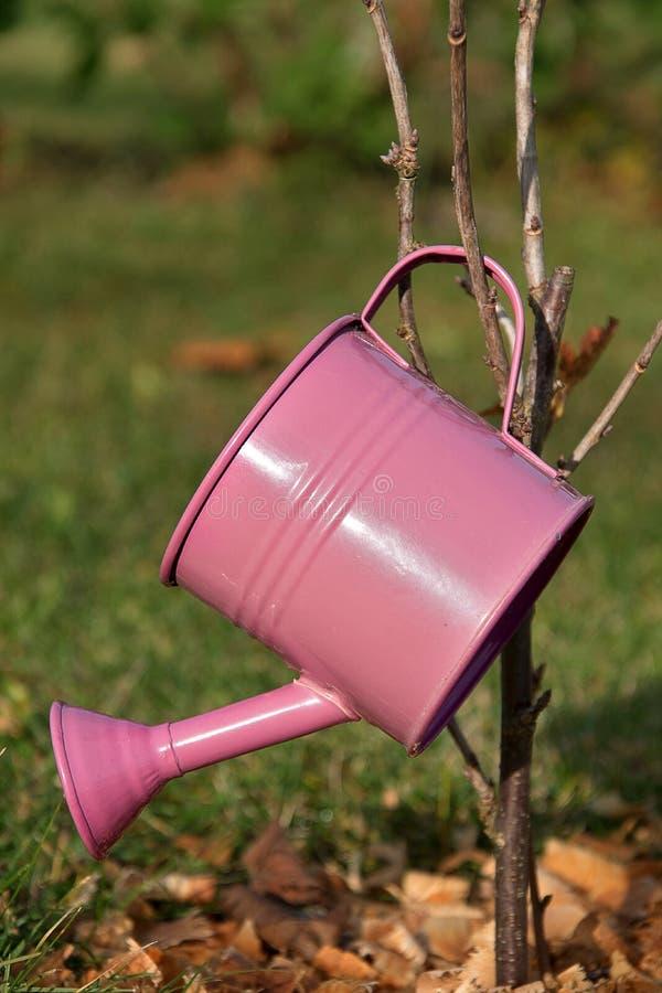 Lata molhando do metal pequeno para molhar colocado em uma árvore no jardim Potenciômetro de molhar fotos de stock royalty free