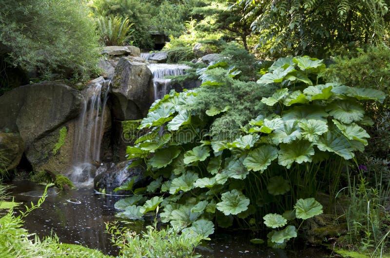 Download Lata ogrodu obraz stock. Obraz złożonej z ogród, wyznaczający - 41951285