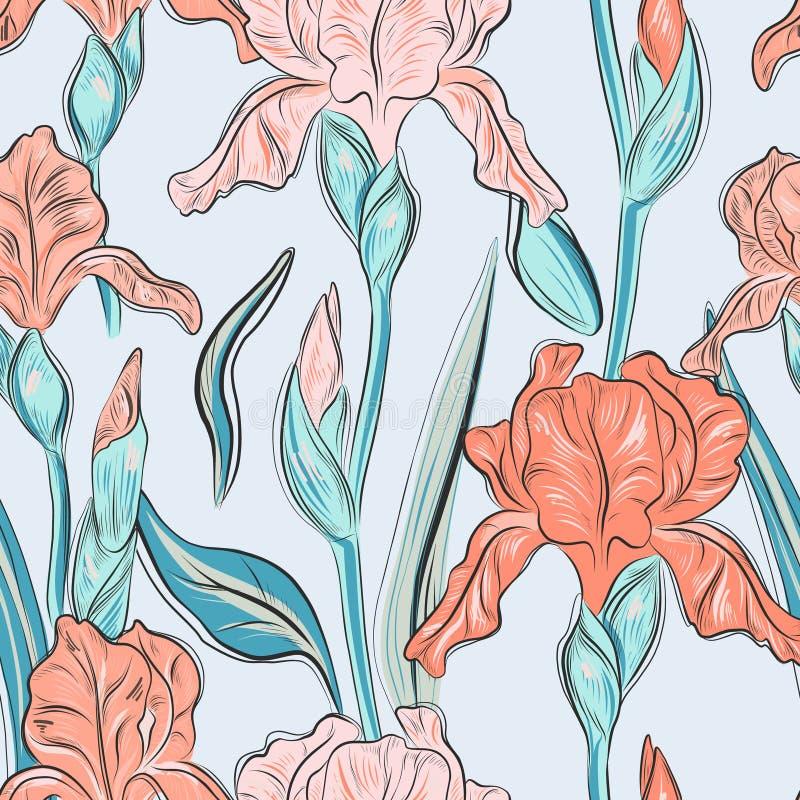 Lata okwitnięcia irysowa ręka rysujący druk Nowożytnej kwiat botaniki kolorowy wzór Naturalny akwareli wiosny kwiat ilustracja wektor