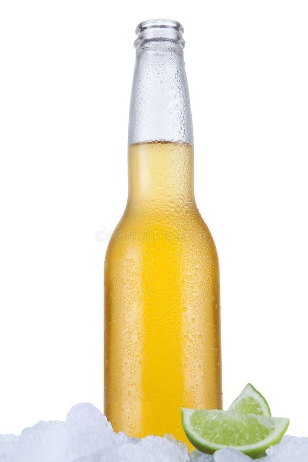 Lata piwo obraz royalty free