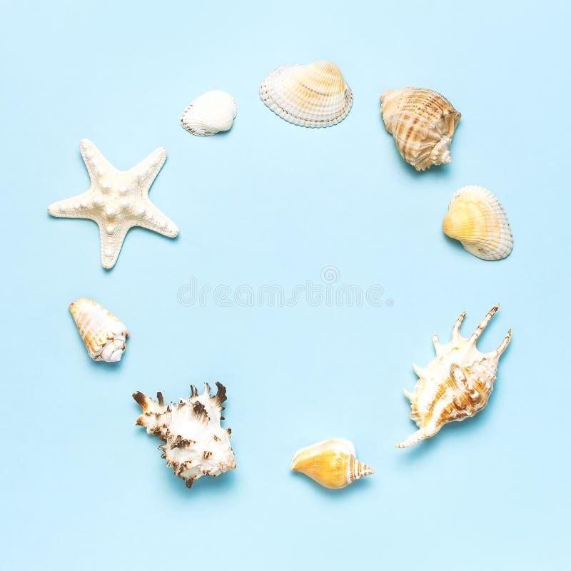 Lata poj?cie, morski t?o Rama różni seashells i rozgwiazda na pastelowym błękitnym tle Odg?rny widok, mieszkanie obraz royalty free