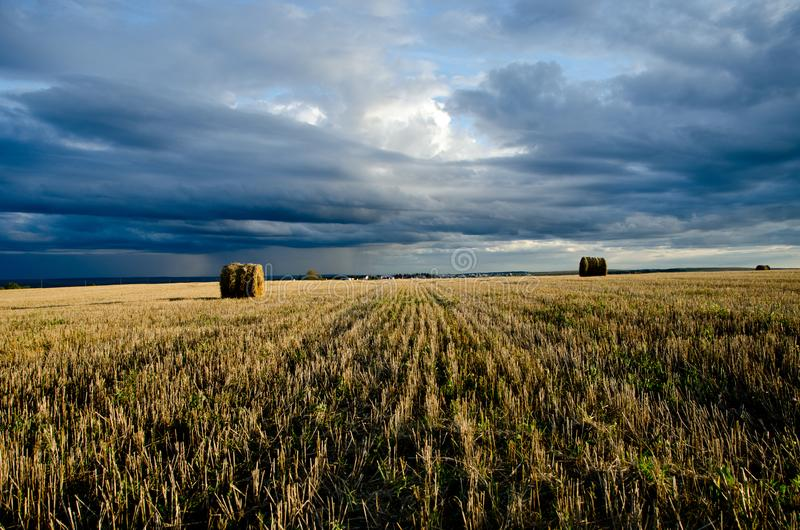 Lata pole podczas hayfields obrazy stock