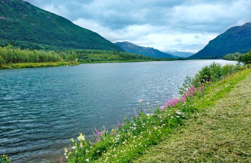 Lata Senja wybrzeże (Norwegia) obraz stock