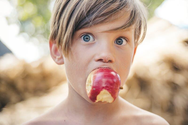 Lata szczęśliwy chid i radości chłopiec na popióle w wiosce Plenerowi wakacje i naturalny karmowy pojęcie Wakacje w gospodarstwie zdjęcia royalty free