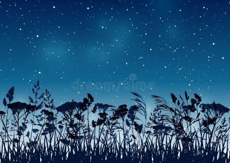 Lata tło z drzewko palmowe sylwetkami na nocy gwiaździstym niebie ilustracja wektor