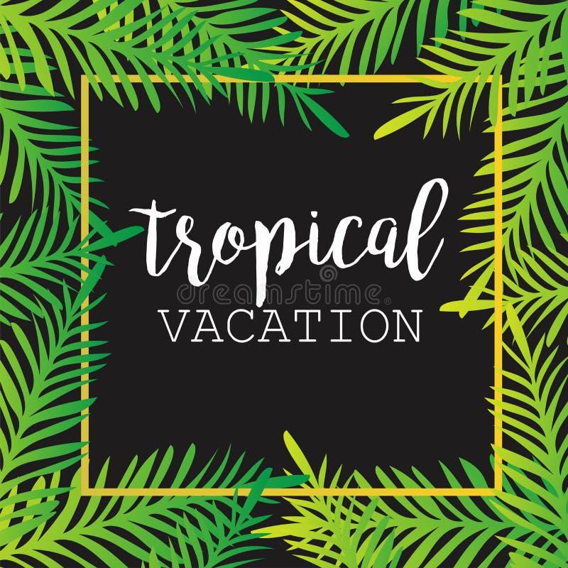 Lata tropikalny tło palmowi liście zwrotniki, tropikalni, drzewka palmowe, tropikalna palma opuszczają ilustracja wektor
