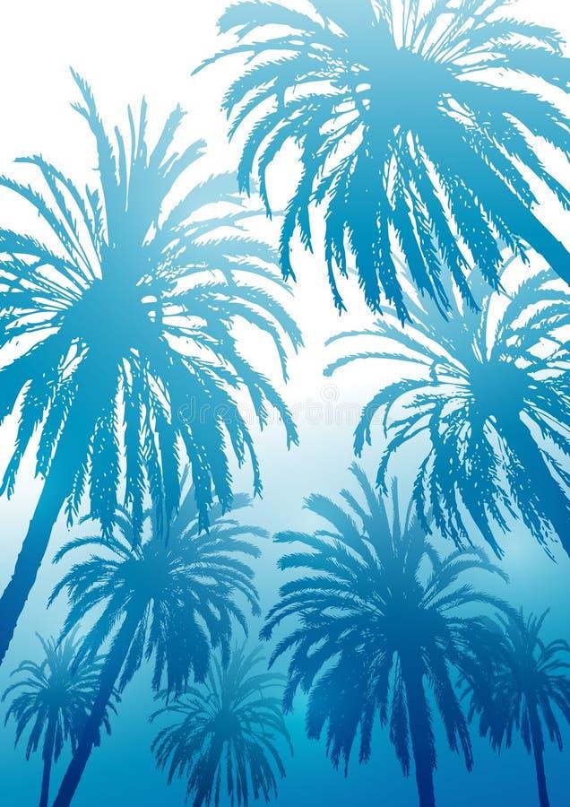 Lata tropikalny tło z drzewko palmowe sylwetkami na błękicie royalty ilustracja
