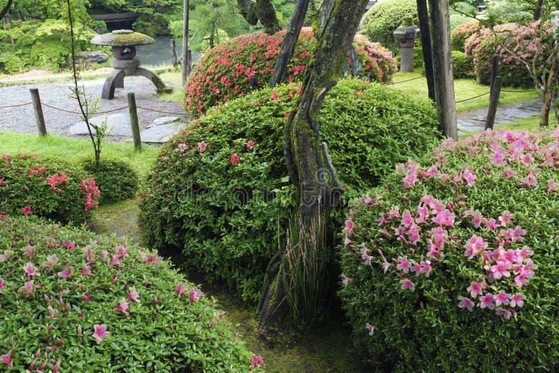 Download Lata Zen ogród obraz stock. Obraz złożonej z azalie, kamień - 28965503