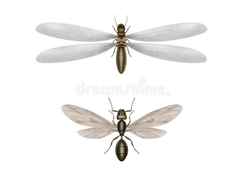 Latająca termitu i latania mrówka ilustracji
