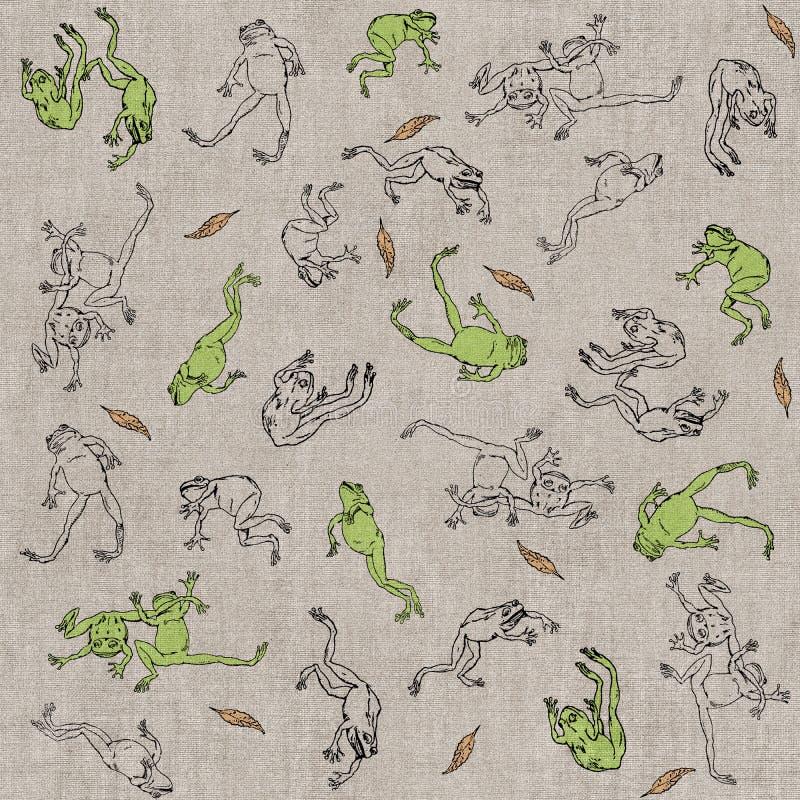 Latające żaby obraz stock