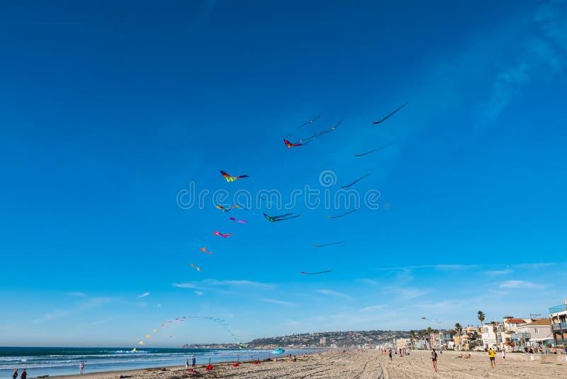 Latające kanie na niebieskim niebie fotografia stock
