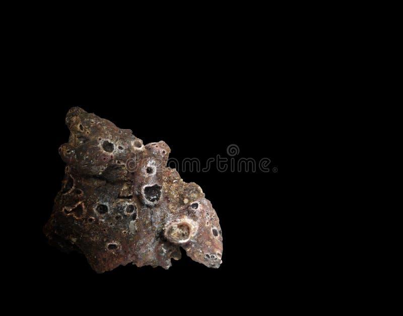 Latający meteor zdjęcia royalty free