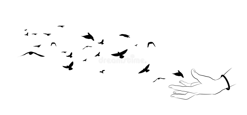 Latający ptaki i ręk sylwetki na białym tle Wektor il ilustracja wektor