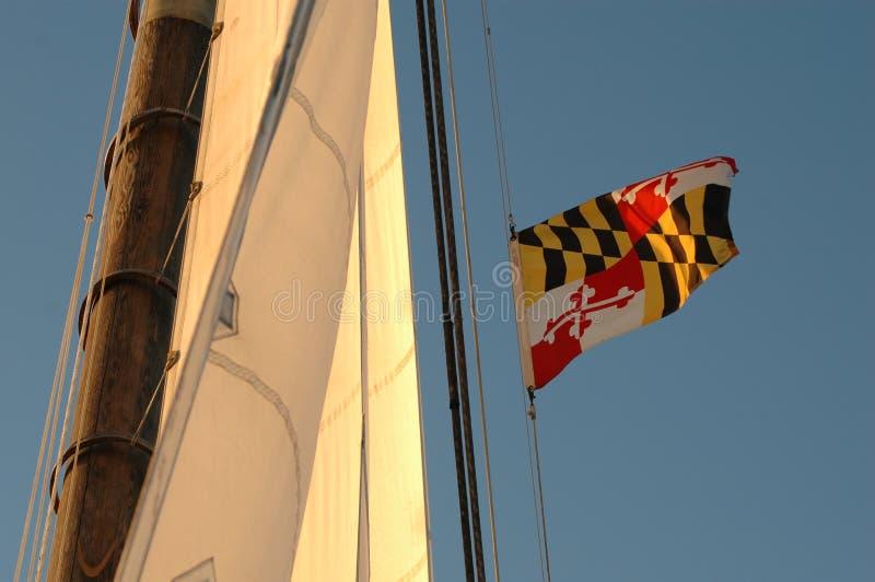 latający wysoki bandery stanu Maryland fotografia stock