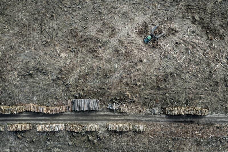 Lataj?cy nad szokuj?cy wylesienie, zniszczony las, Europa obrazy stock