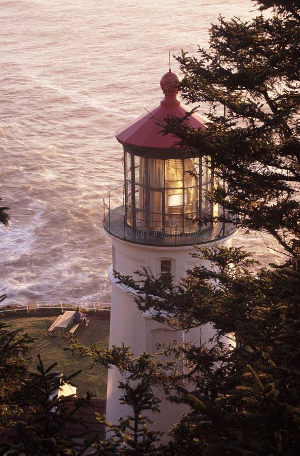 latarnia morska heceta głowy obraz stock
