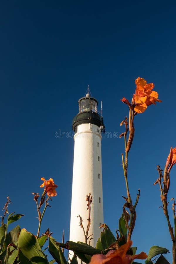 Latarnia morska z kwiatami z głębokim niebieskim niebem przy za obrazy royalty free