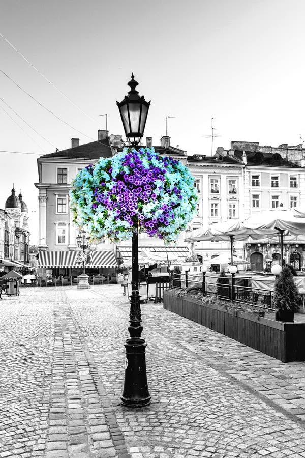 Latarnia uliczna w kwiatach Lviv Pekin, china fotografia royalty free