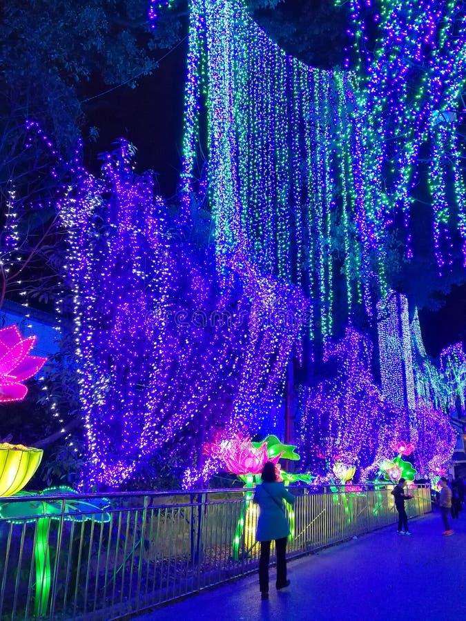 Latarniowy festiwal w Zigongï ¼ Œ Chiny obrazy royalty free