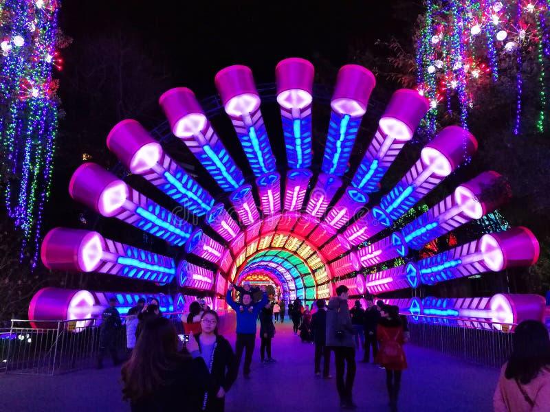 Latarniowy festiwal w Zigongï ¼ Œ Chiny zdjęcia royalty free