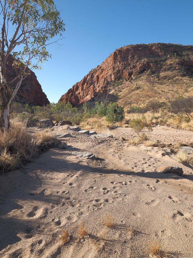 Late afternoon outback in the dry river bed at Simpsons Gap. The McDonnell Ranges near Alice Springs, Australia, May 2017 royalty free stock images