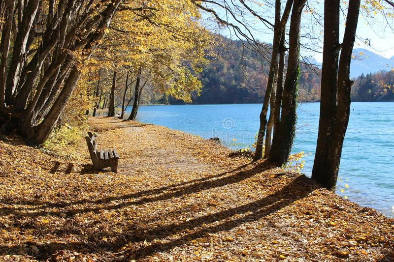 Late autumn in Austria, Europe. A pathway with trees and bench at the Wolfgangsee royalty free stock photo