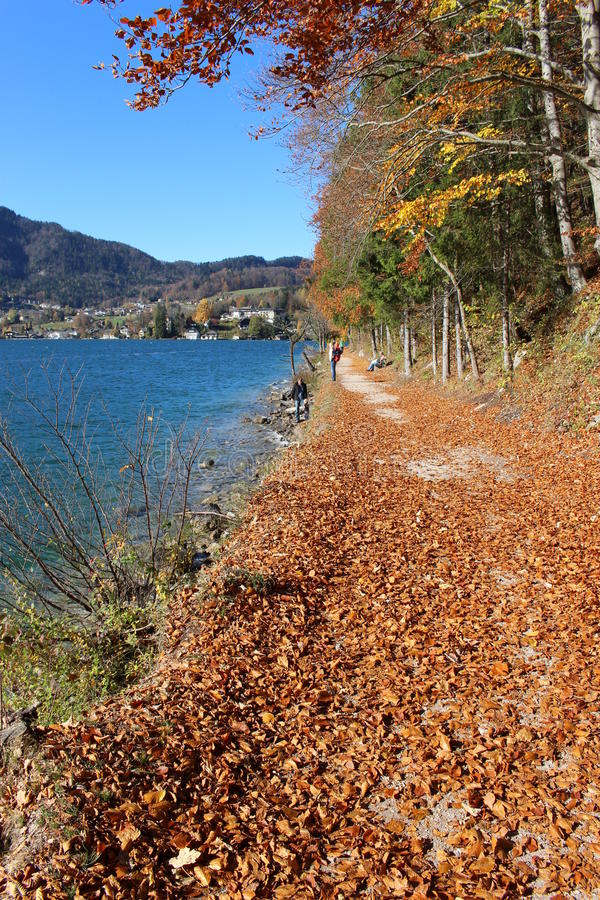 Late autumn in Austria, Europe. A pathway with trees and fallen leaves at the Wolfgangsee royalty free stock photography