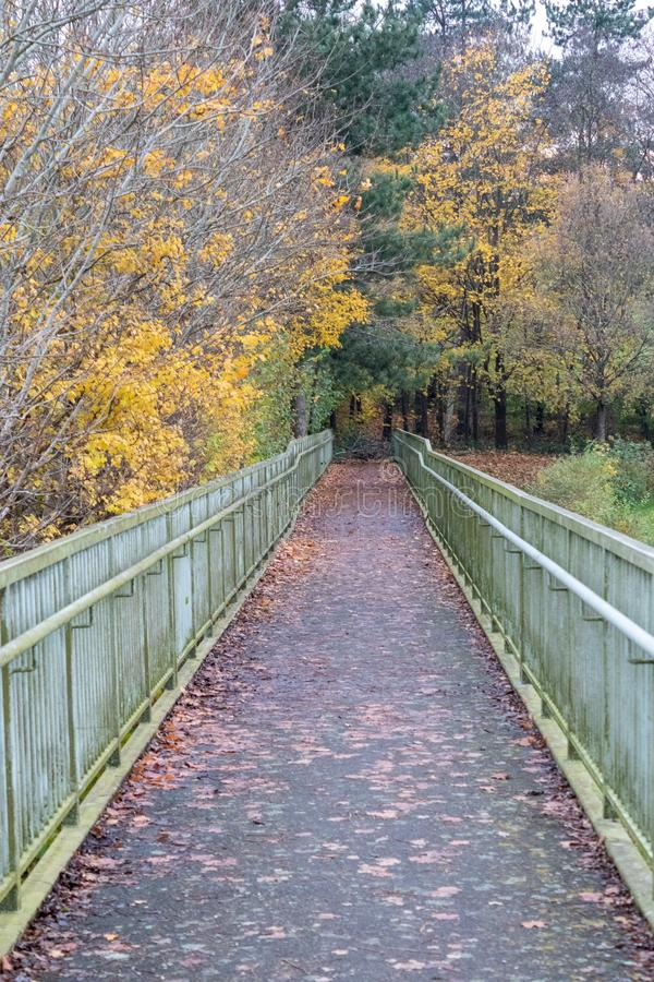 A late autumn day in Buchan Park Crawley United Kingdom. A walk in Buchan Park Crawley England on a cold day in November stock photos