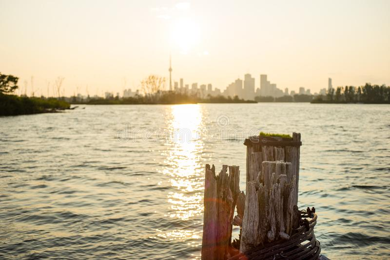 Late day view of downtown Toronto from Tommy Thompson Park. Late day view of downtown Toronto from across a body of water in Tommy Thompson Park stock photos