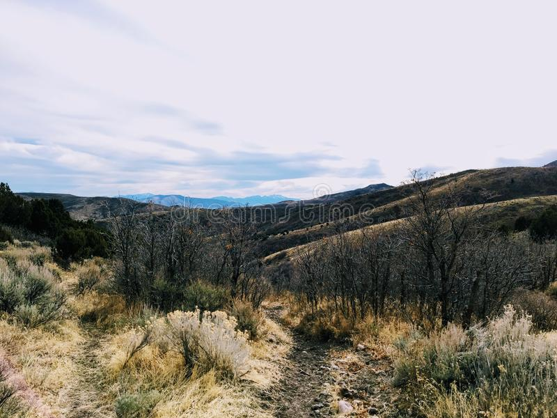 Late Fall panorama forest views hiking, biking, horseback trails through trees on the Yellow Fork and Rose Canyon Trails in Oquirr. H Mountains on the Wasatch stock image