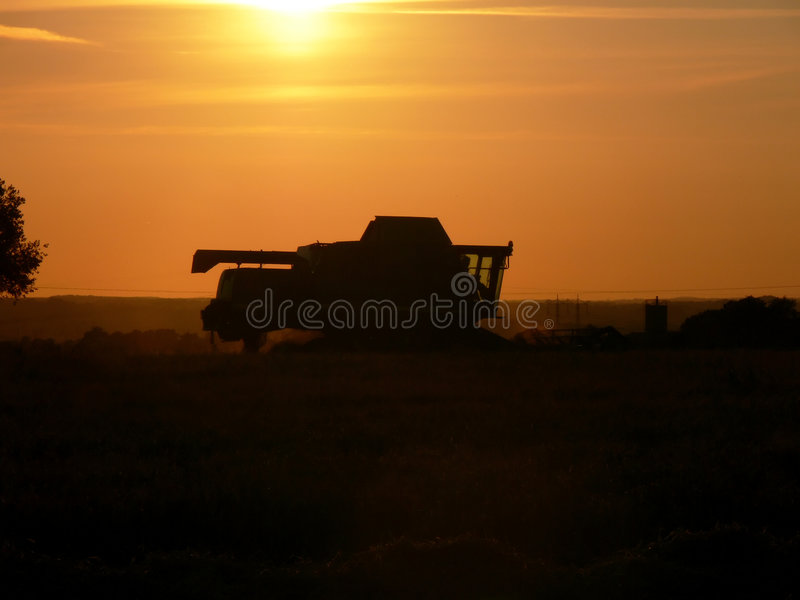 Download Late Night Harvesting stock photo. Image of plant, silhouette - 2927742