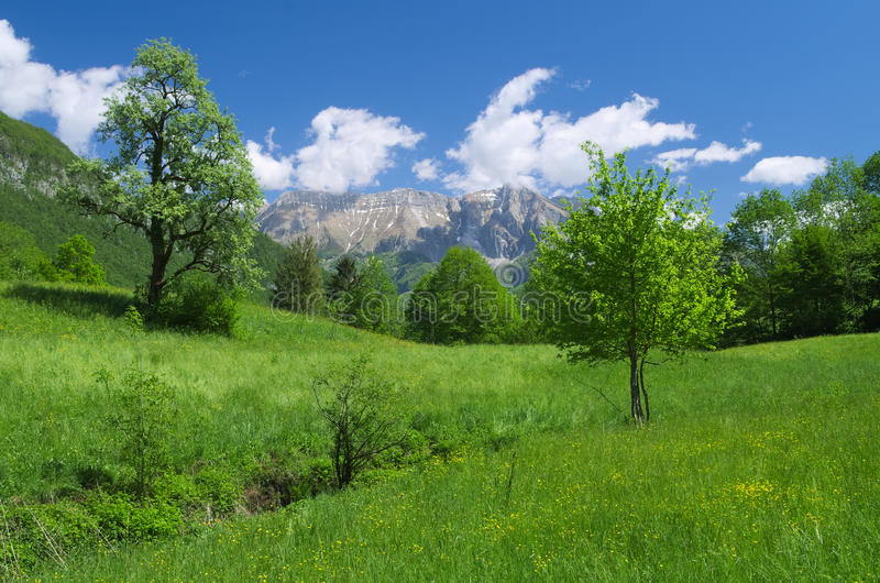 Late spring view of the alpine valley of Kobarid (Caporetto). With Krn mountain in the background, Slovenia royalty free stock photography