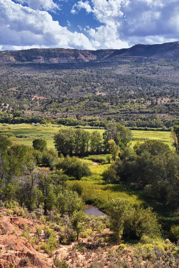 Late Summer early Fall panorama forest views hiking, biking, horseback trails through trees along Highway 40 near Daniels Summit b. Etween Heber and Duchesne in stock photography