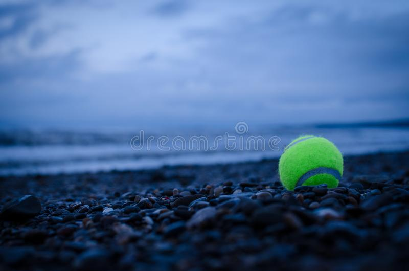 LATE WALK WITH DOG,BY THE BEACH. DARK,GREEN BALL,TENIS stock image