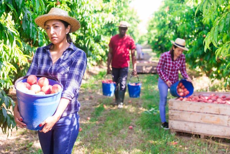 Reife kolumbianische frauen suchen männer