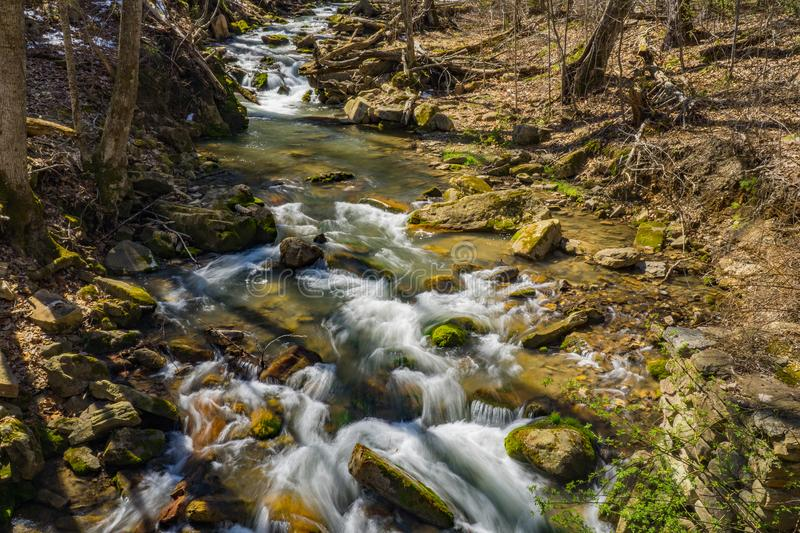 Later Afternoon Shadows over a Wild Mountain Trout Stream stock photography