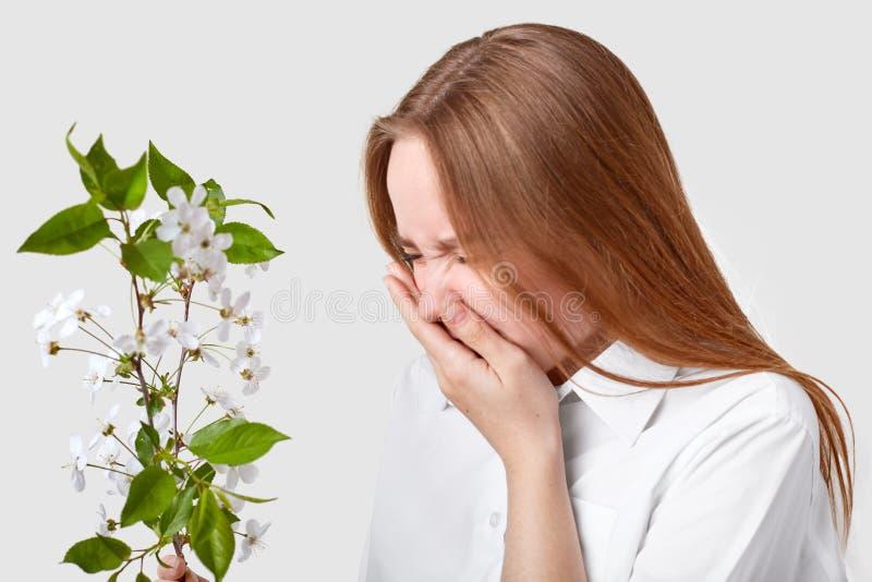 Lateralmente sparato della donna dispiaciuta soffre dall'allergia, sta davanti al ramo con il fiore, starnutisce, ritiene l'ipers fotografie stock libere da diritti