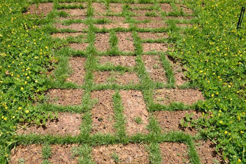 Laterite διάβαση πεζών πετρών στον κήπο στοκ φωτογραφία