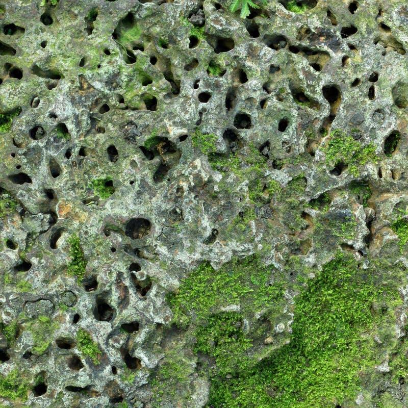 Laterite steenbaksteen stock afbeelding