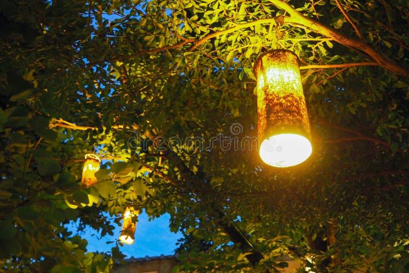 Laternen, die an der Baumniederlassung hängen lizenzfreies stockfoto