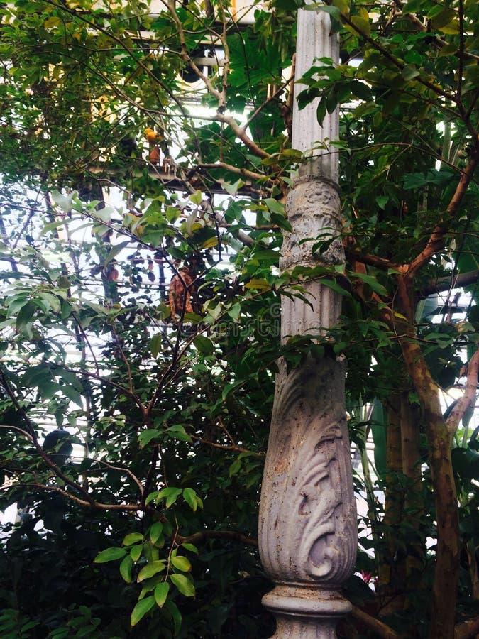 Laternenpfahl und Vegetation lizenzfreies stockfoto