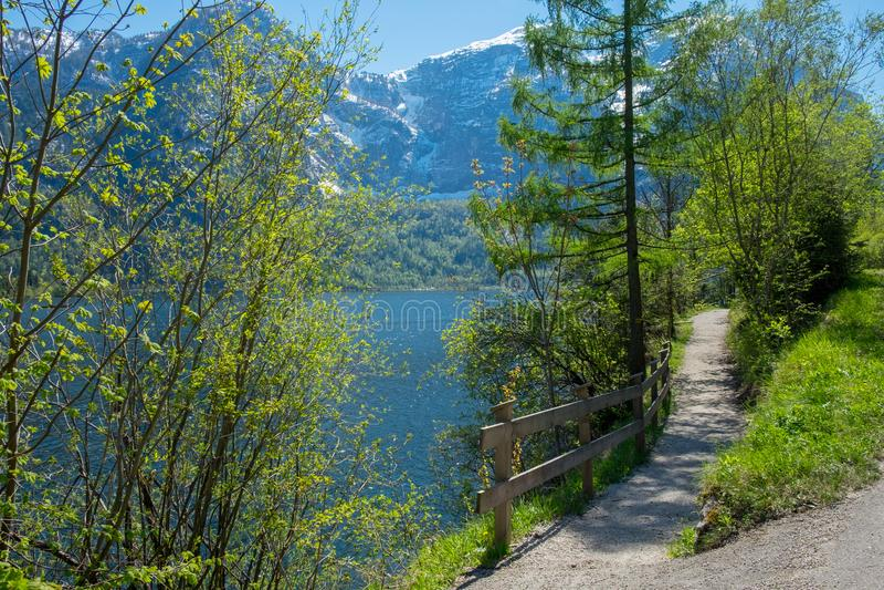 Laterytowy glebowy drogowy brzeg jeziora obraz royalty free