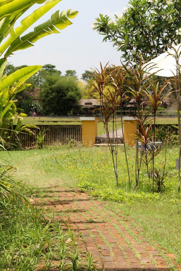 Laterytu spaceru ceglany sposób w parku fotografia royalty free