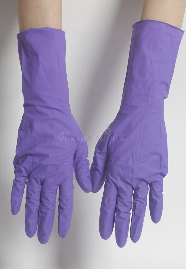 Latex-Handschuhe für das Säubern auf weibliche Hand stockbilder