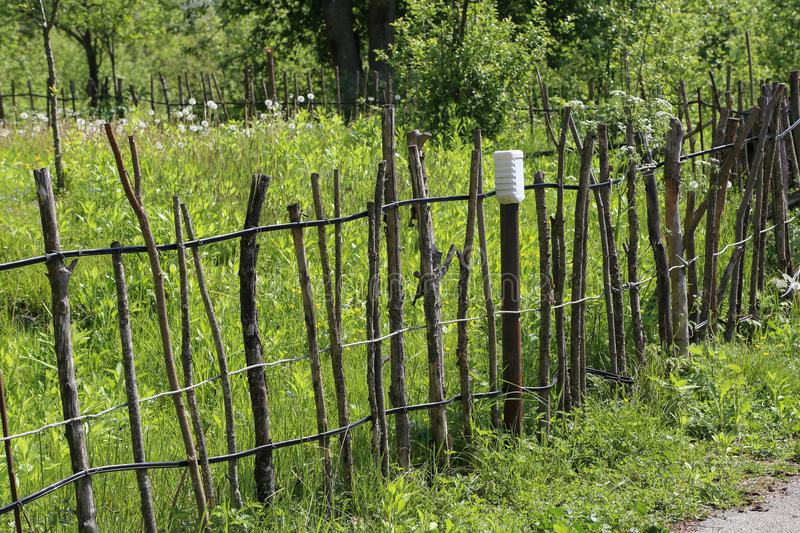Lath fence. /  in Garden royalty free stock images