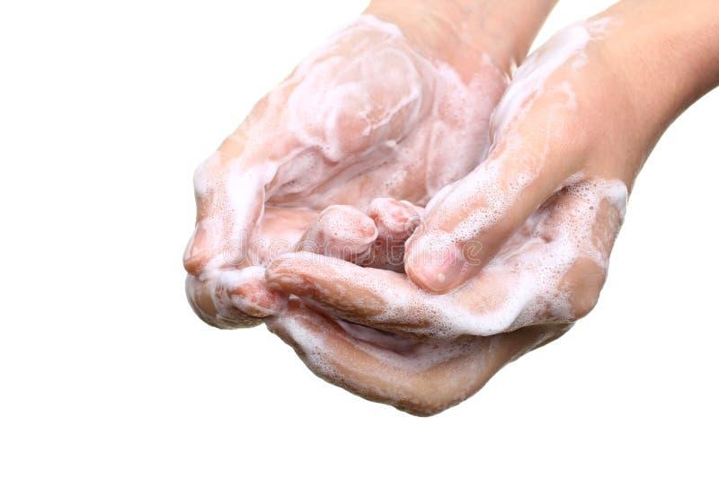 Lathered hands. Isolated on white background stock photo