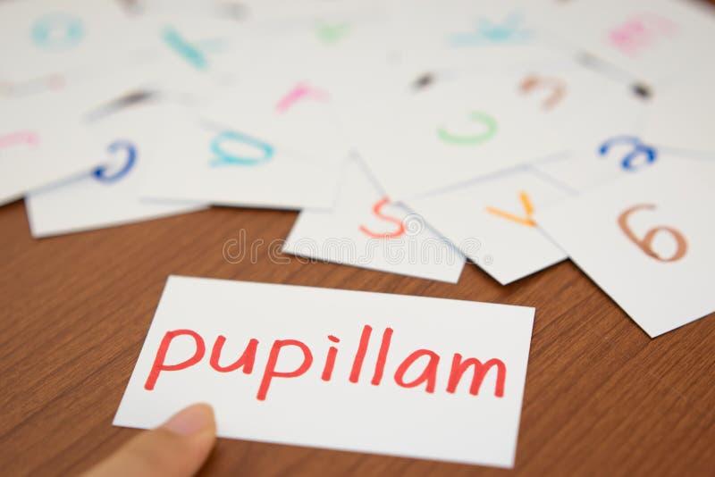 Latim; Aprendendo a palavra nova com os cartões do alfabeto; Escrita AP foto de stock