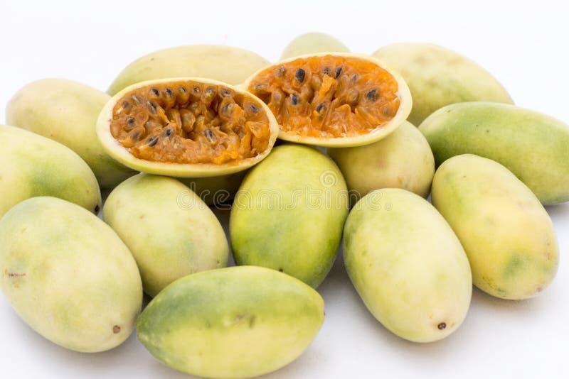 Latin American fruit called banana passionfruit (lat. Passiflora tripartita) (in Spanish mostly tumbo, curuba, taxo. Latin American fruit called banana royalty free stock images